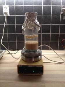 Yeast in suspension